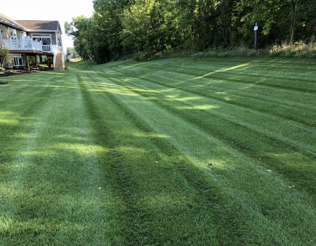 Mowing 3
