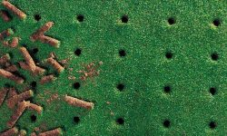 core-aerating-holes